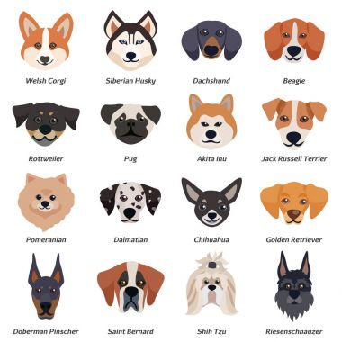 Purebred Dogs Faces Icon Set