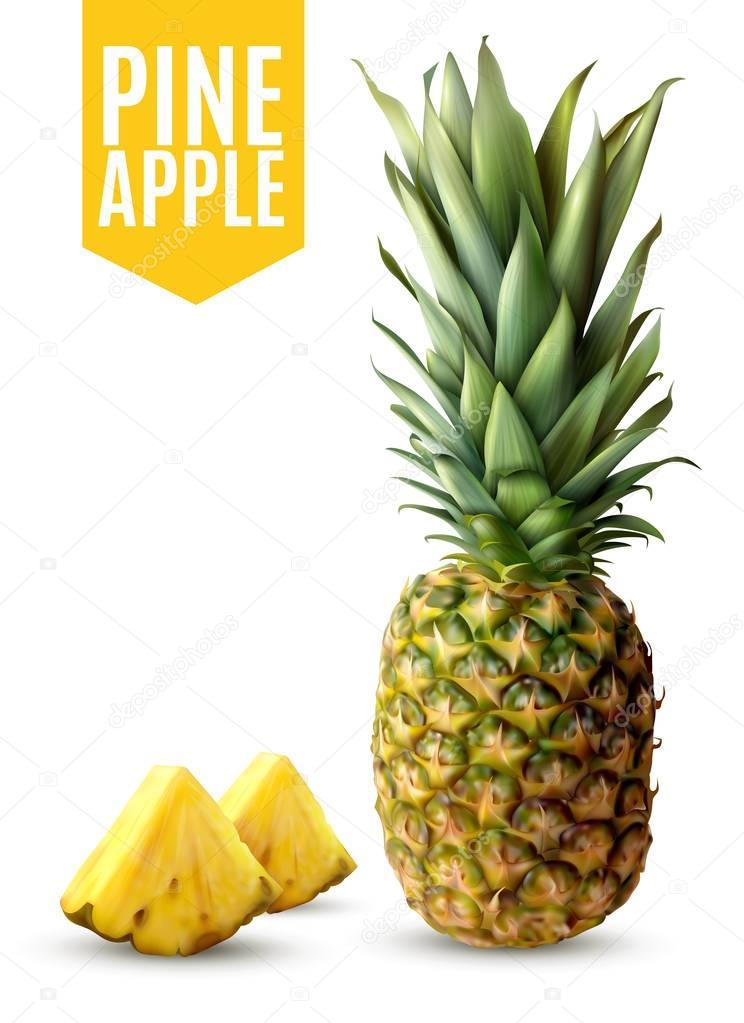 Realistic Pineapple Illustration