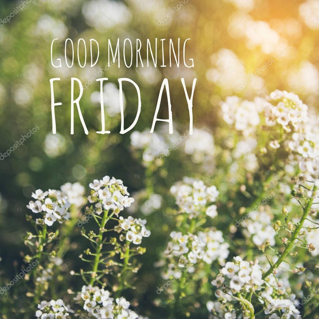 Good Morning Friday With Sun Light Stock Photo Parinyabinsuk