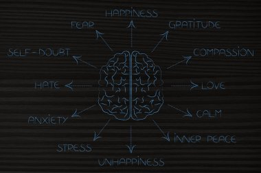 brain surrounded by list of human emotions
