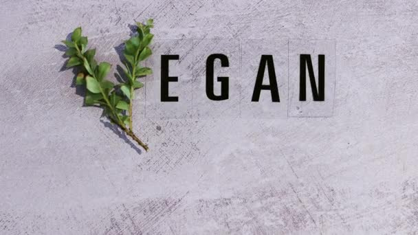 hand placing leaves next to Vegan text with V made from small branches concept of healthy plant-based diet and animal rights