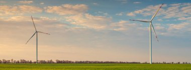 panorama of green wheat field with two wind turbines under sky with copy space