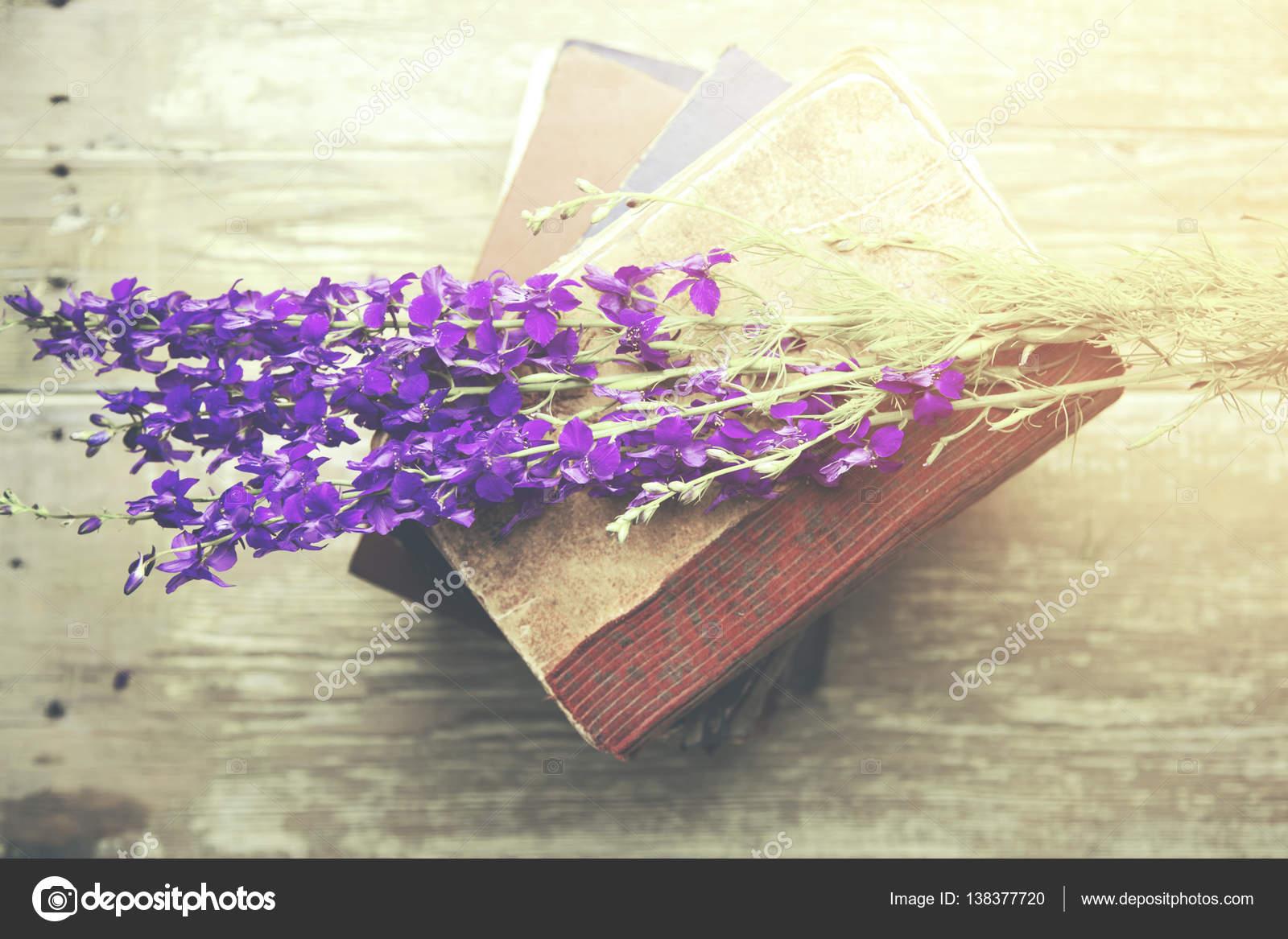 libro y flores de color púrpura — Foto de stock © Tiko0305 #138377720