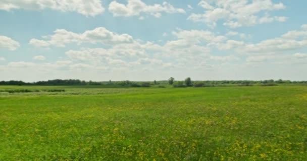 Krásná krajina se zelenou trávou a modrou oblačnou oblohou. Krásná louka s jarními květy. Krása přírody. Nádherná krajina. Polní květiny. Zelené pole se žlutými květy. Panning.