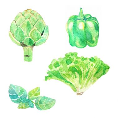 Hand dawn set with watercolor vegetables, raw food, bell pepper