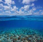 Podvodní korálové útesy mořského dna s oblohou a mrakem