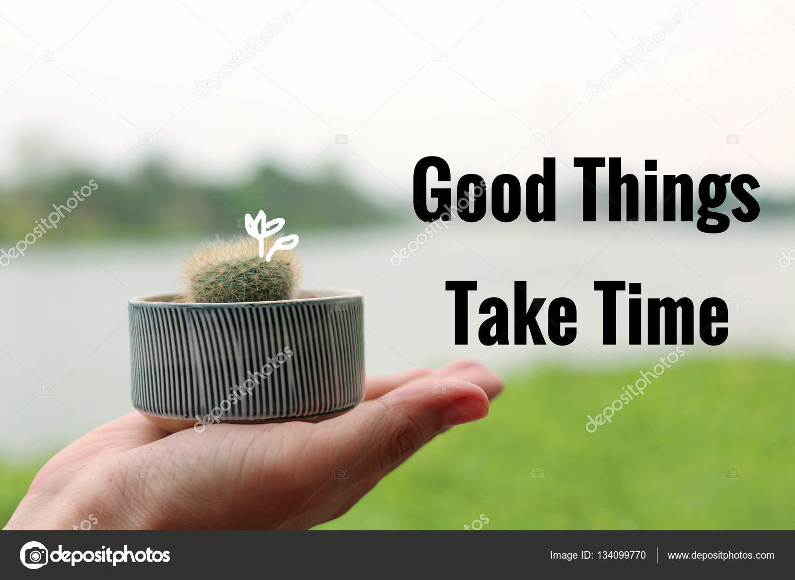 Inspirational Quote Good Things Take Time With Cactus And Rive