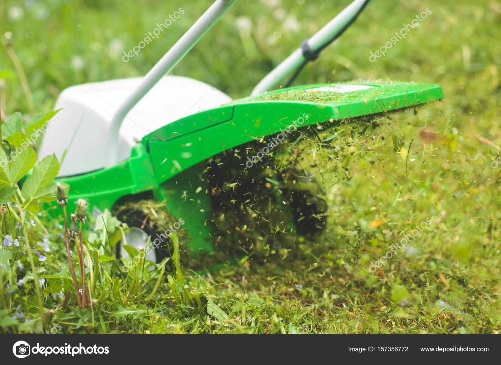 Les Outils De Jardinage Avec Photos un processus de pelouse, tonte, concept de tondre la pelouse