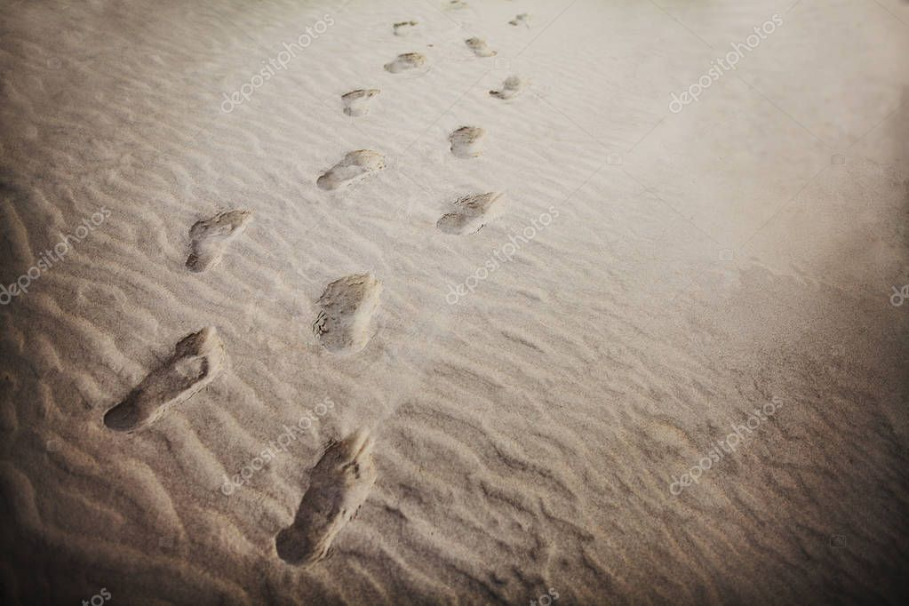 Footprints in the sand at beach