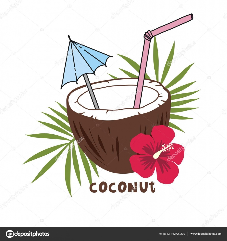 Print With Coconut Tropical Drink Stock Vector C Webmuza 162729270