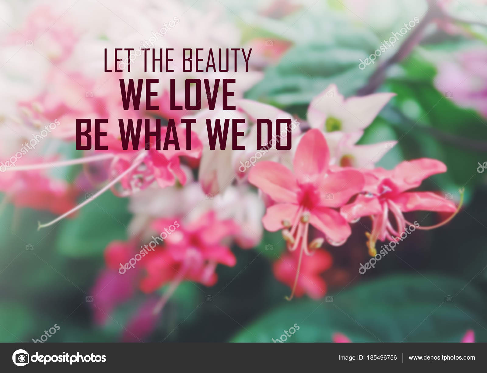 packground blooming love quotes inspirational quote blur flower