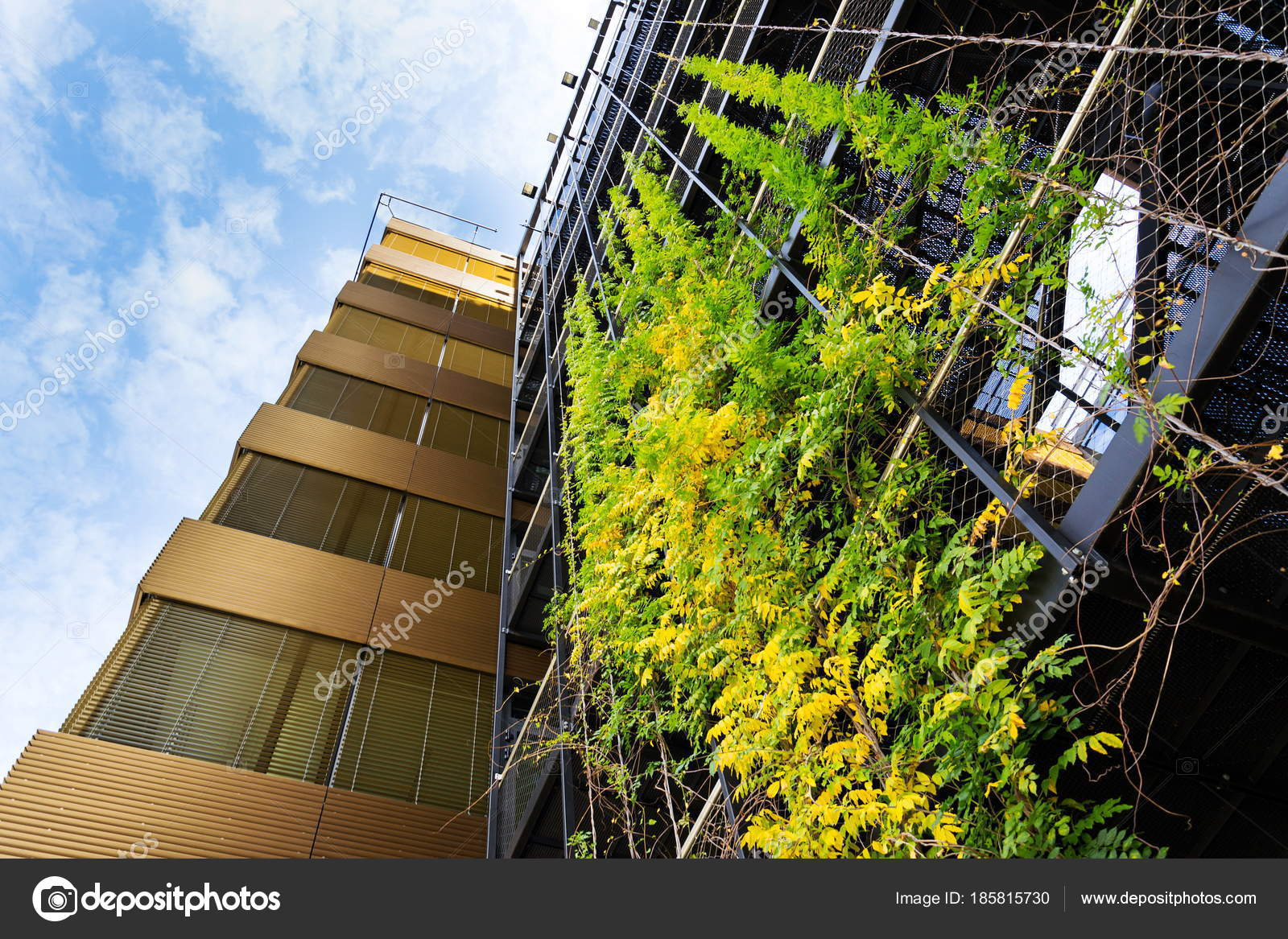 green wall office potted sprawling plants outdoor green living wall vertical garden modern office stock photo