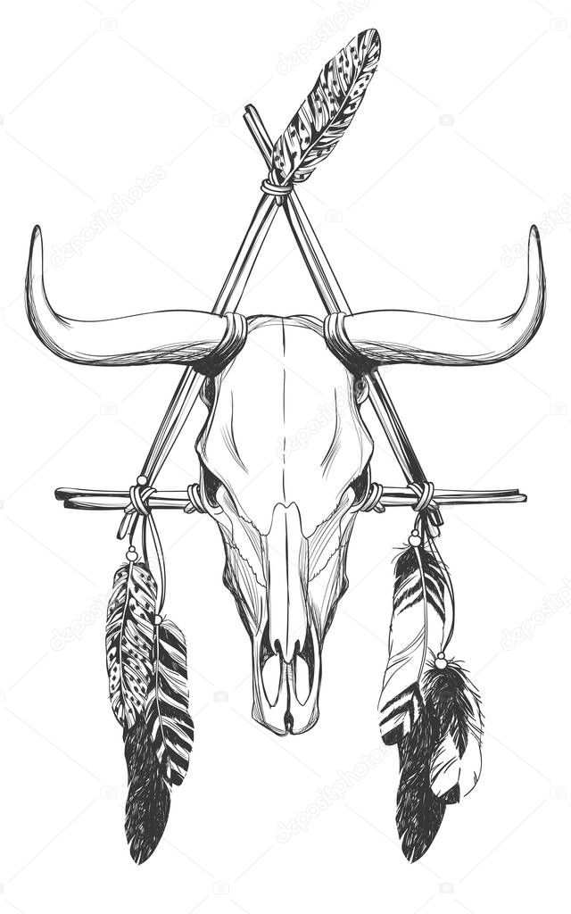 Cráneo de Toro con plumas y el cazador de sueños — Archivo Imágenes ...