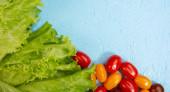 saftige Salatblätter und reife Kirschtomaten auf hellblauem Hintergrund