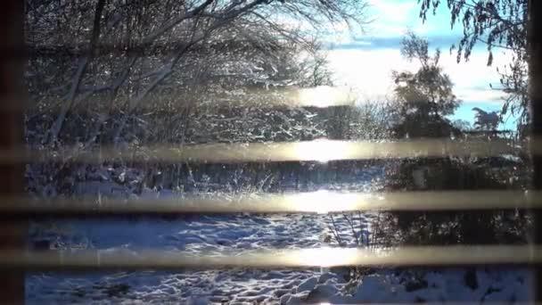 Pohled z okna v zimě během oblevy. Krásný výhled z okna do zahrady v brzy na jaře
