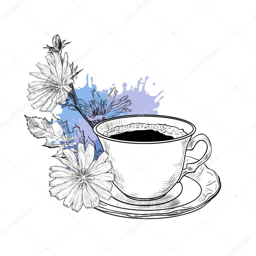Chicory Flowers And Coffee Cup With Saucer Hand Drawn Vector Premium Vector In Adobe Illustrator Ai Ai Format Encapsulated Postscript Eps Eps Format