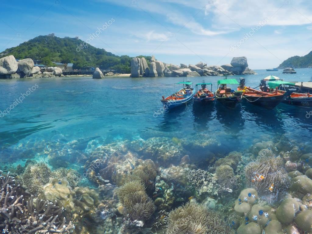 Underwater coral reef seabed view