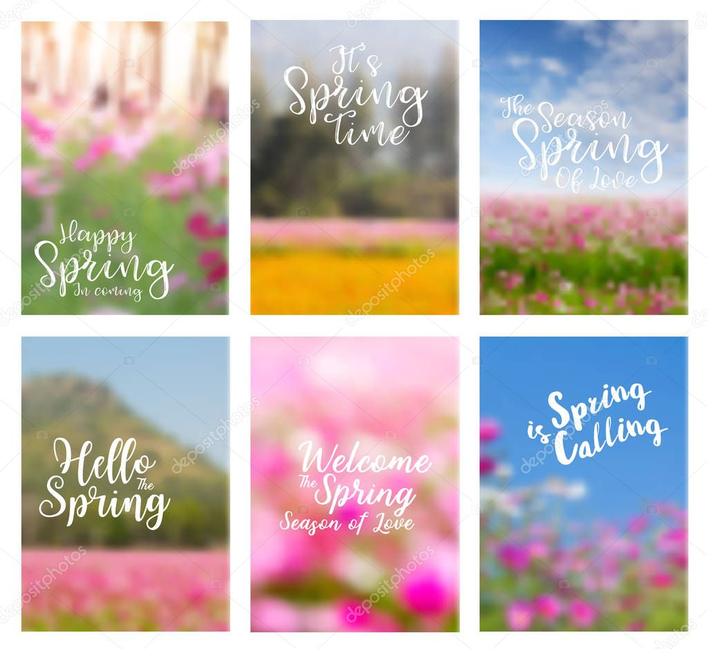 Spring flowers ideas concept  layout in A4 size