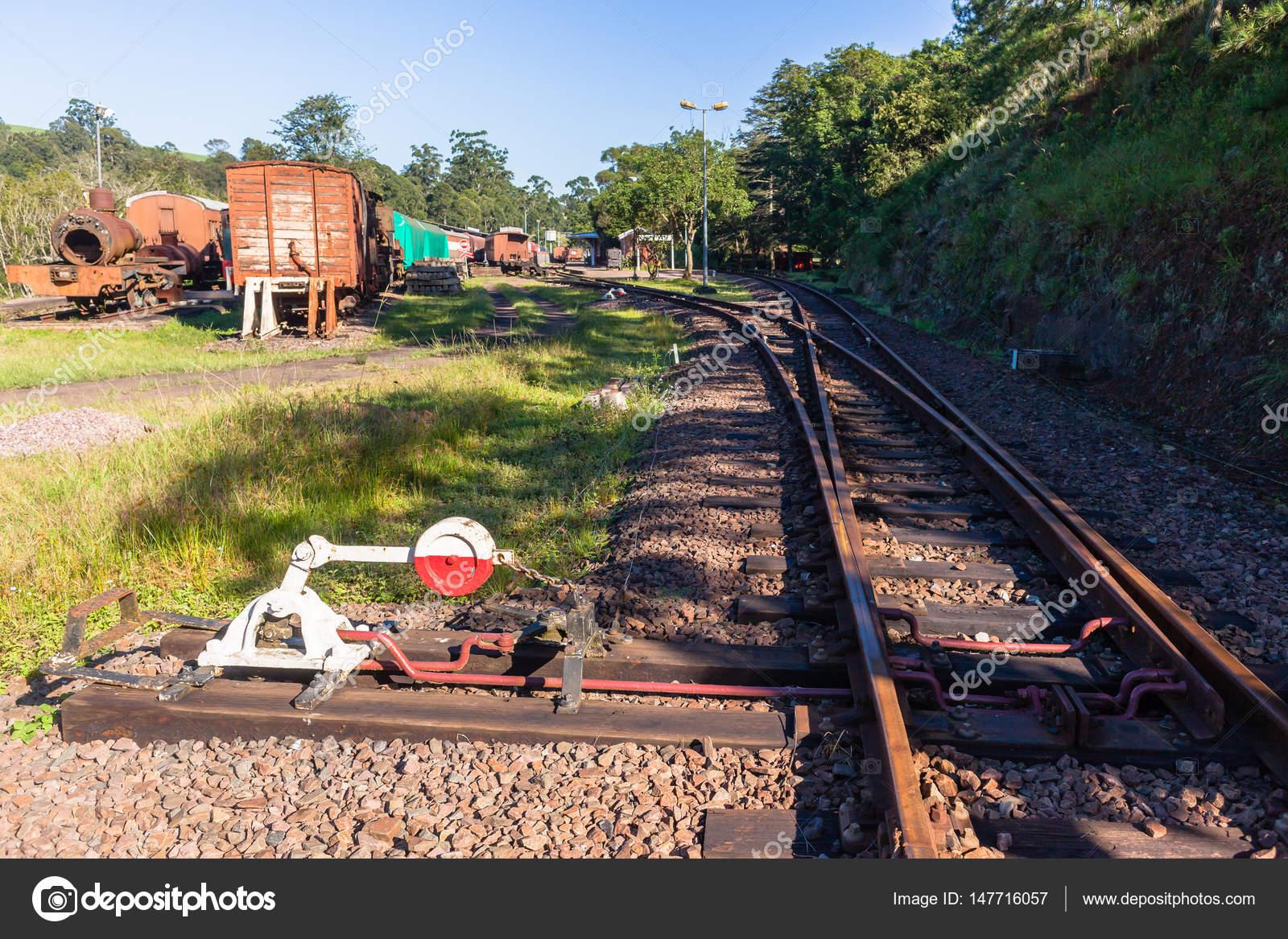 Züge-Dampf-Friedhof-Bahnhof — Stockfoto © ChrisVanLennepPhoto #147716057