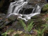 schöner Wasserfall auf Naturhintergrund