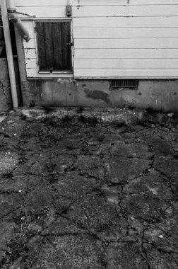 Cracked asphalt pavement taken in black and white. Taken in Hokkaido, Japan