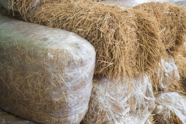 Stacked Blocks Of Bales Hay, stock photo