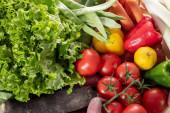 sezónní zelenina, rajčata, papriky a další