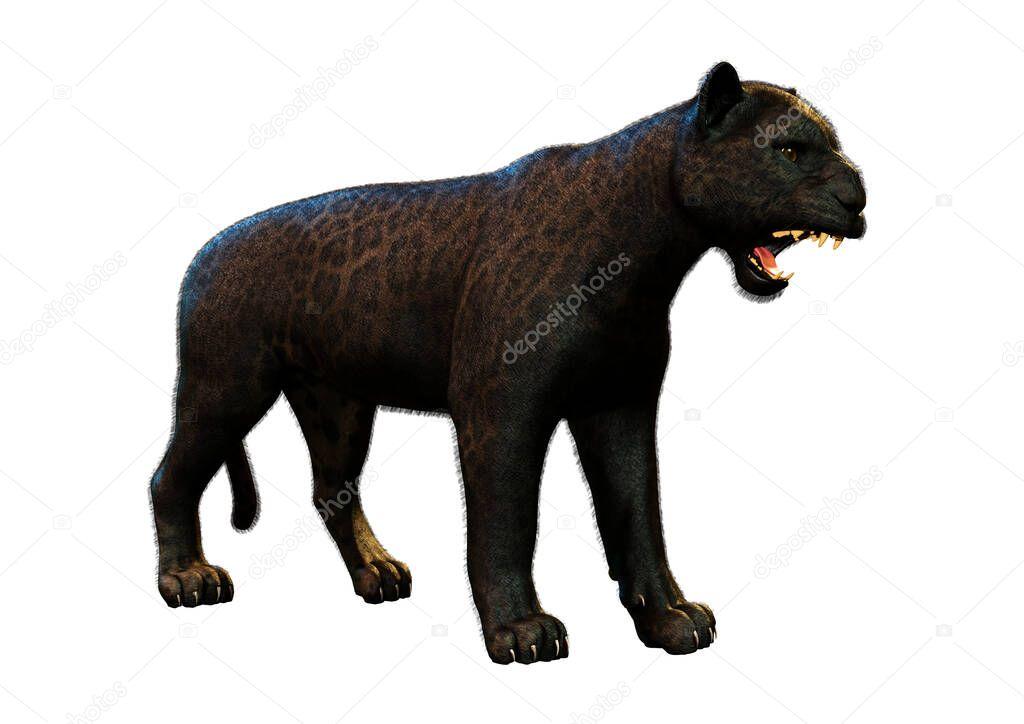 PantherMediaSeller