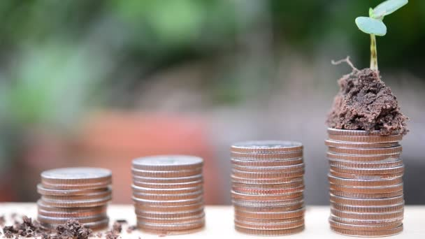 Stacks of gold coins with plant on blurred background, saving money concept