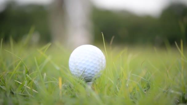 Golfer spielt Golf auf Rasenplatz