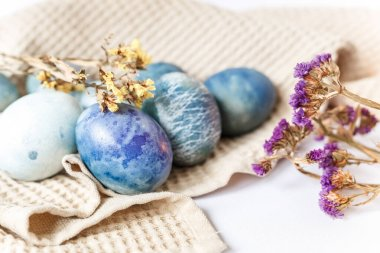 Beautiful still life with colored easter eggs and spring flowers in rustic style on a white background.