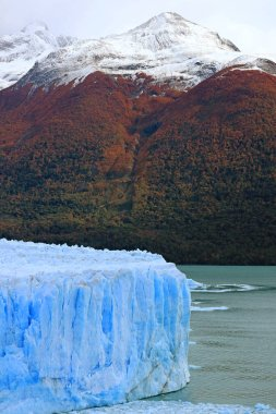 Perito Moreno Glacier in Lake Argentino with Snowcapped Mountains in the Backdrop, Patagonia, Argentina, South America