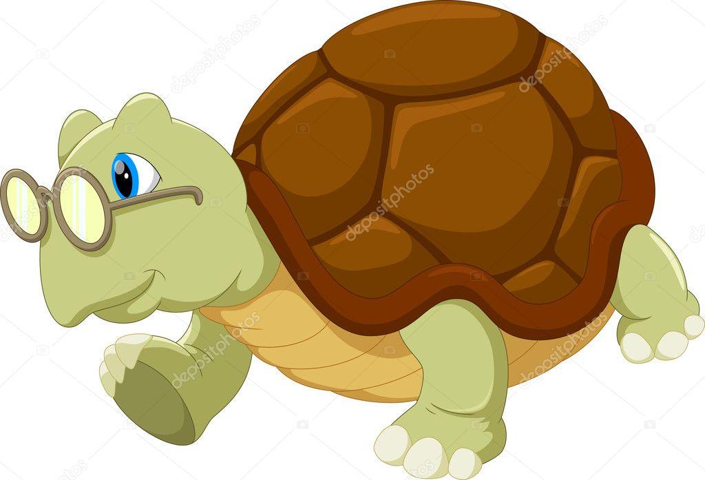 сожалению вырастить картинки черепаха в очках того времени такие
