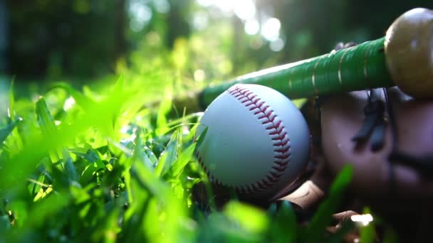 Baseballs, baseball gloves resting on the lawn with the warm light of the setting sun