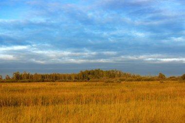 Siberian cloudy autumn landscapes, Siberia, Russia view
