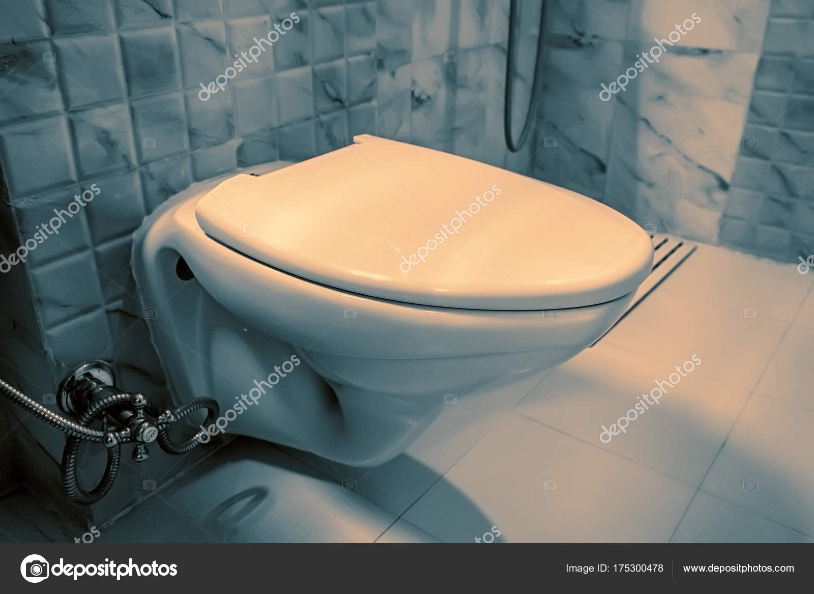 Flush toilet bowl in lavatory — Stock Photo © Yakov_Oskanov #175300478