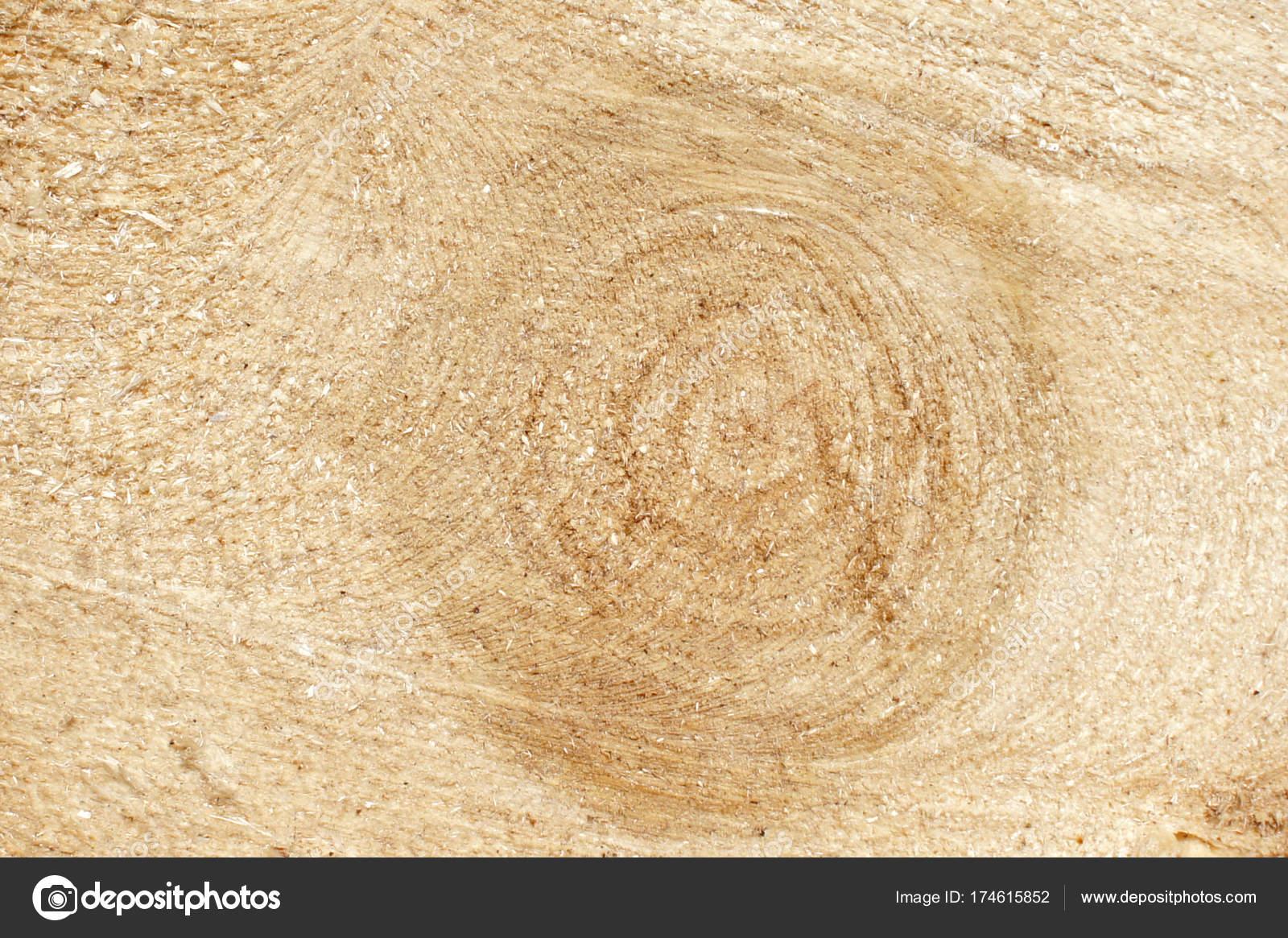 La textura de tronco de madera con círculos. Corte fresco. Close-up ...