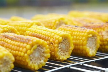 Corn on the grill healthy food