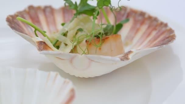 köstliche frische Jakobsmuscheln in Muscheln auf weißem Hintergrund