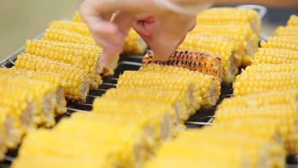 osoba vaření kukuřice na grilu v přírodě