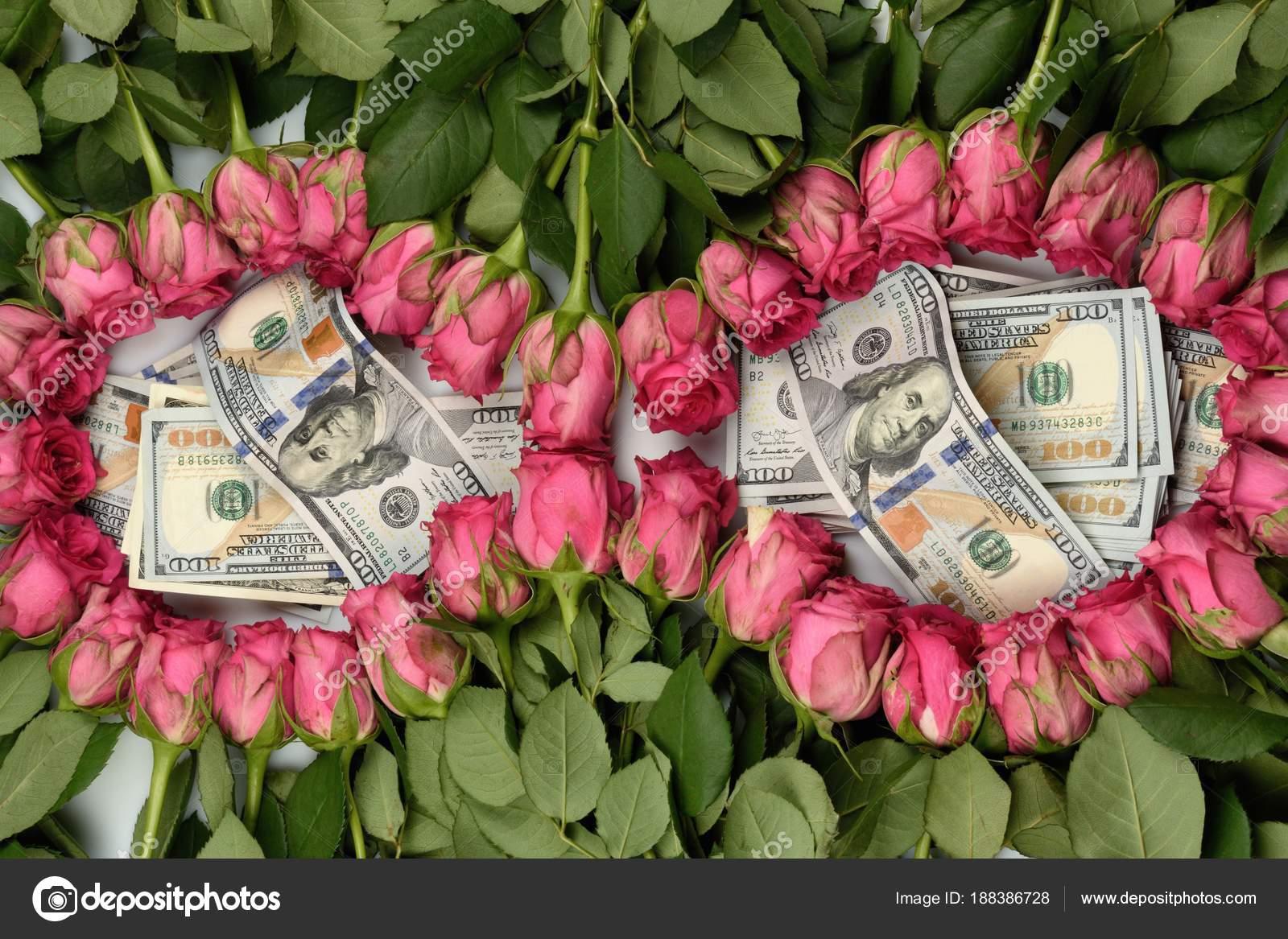 Establecido Numero Dos Circulos Flores Rosas Centro 100 Dolares