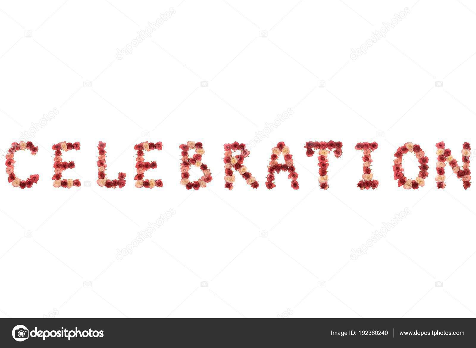 Celebration Letter | Word Celebration Letter Lined Fresh Natural Pink Roses Flowers White