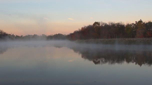 Őszi köd egy esőerdő