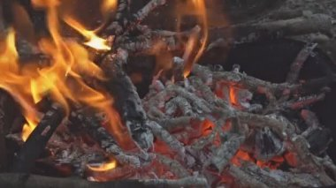 Beautiful Closeup Camp Fire Video Beech Wood Burning Fireplace Full Of Wood  And Fire SLOW MOTION