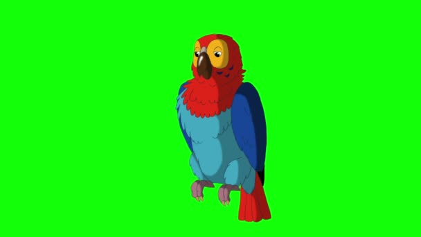 Colorful Parrot Gets Angry. Classic Handmade Animation
