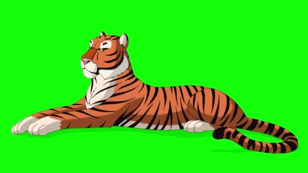 Nagy Tiger hazugság és a hörgés. Animált mozgás grafikus elszigetelt Green Screen