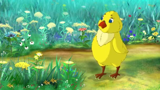 Yellow Chicken is Standing on a flower field and Looking Around. Handmade animation,  motion graphic.