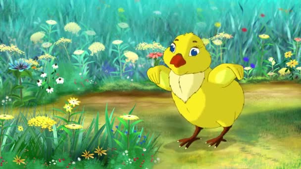 Yellow Chicken stands and tweets on a flower meadow in a sunny day. Handmade animation,  motion graphic.