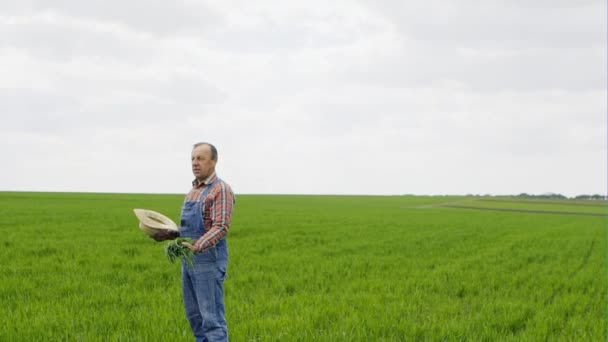A Successful Farmer Stands On Green Field And Throws Up The Hill