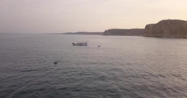 Aerial view of surfers and boat